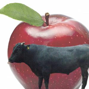 信州のおいしいリンゴと信州牛